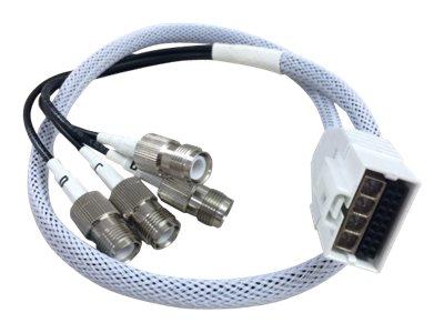 Cisco Antennenkabel - RP-TNC bis RF Stecker DART - 61 cm - Koax - für Aironet 2802E, 2802E (Config)
